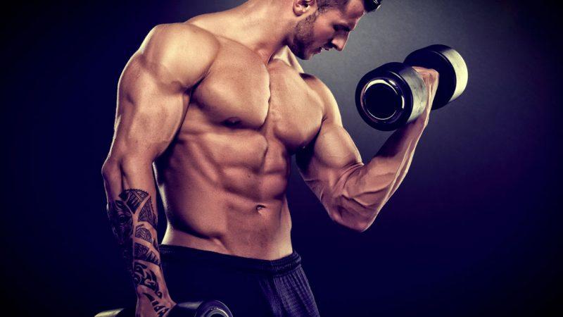 Лучшие упражнения для мужчин
