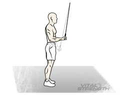 BEST TRICEP EXERCISES FOR MASS #2